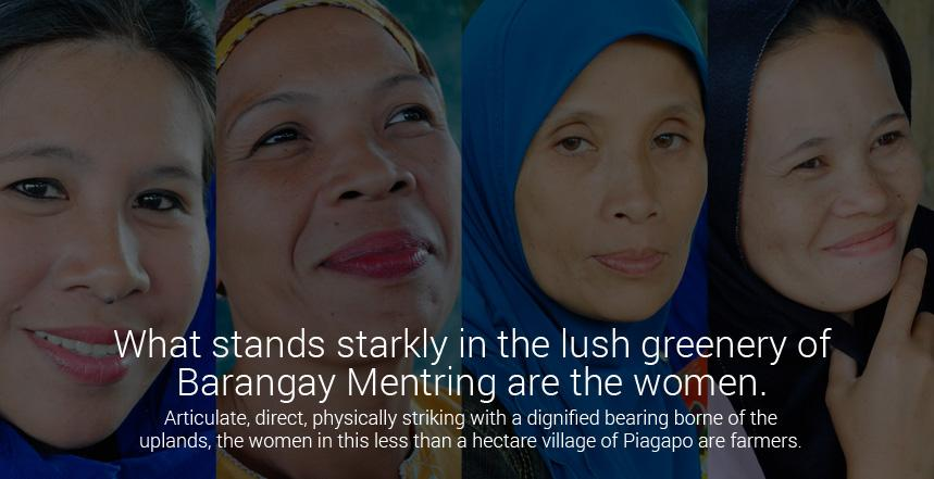 What stands starkly in the lush greenery of Barangay Mentring are the women.   Articulate, direct, physically striking with a dignified bearing borne of the uplands, the women in this less than a hectare village of Piagapo are farmers.