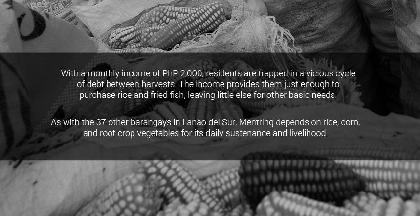 As with the 37 other barangays in Lanao del Sur, Mentring depends on rice, corn, and root crop vegetables for its daily sustenance and livelihood.   With a monthly income of PhP 2,000, residents are trapped in a vicious cycle of debt between harvests. The income provides them just enough to purchase rice and fried fish, leaving little else for other basic needs.
